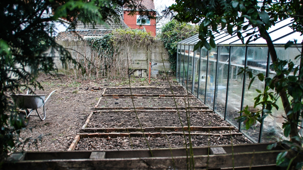 New garden lay-out