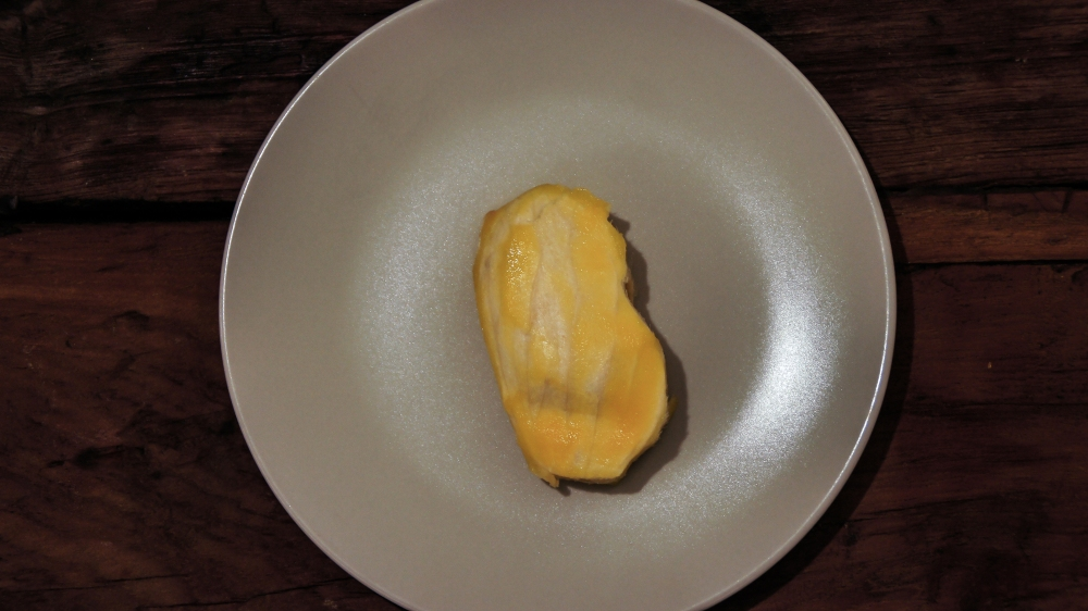 Mango seed shell