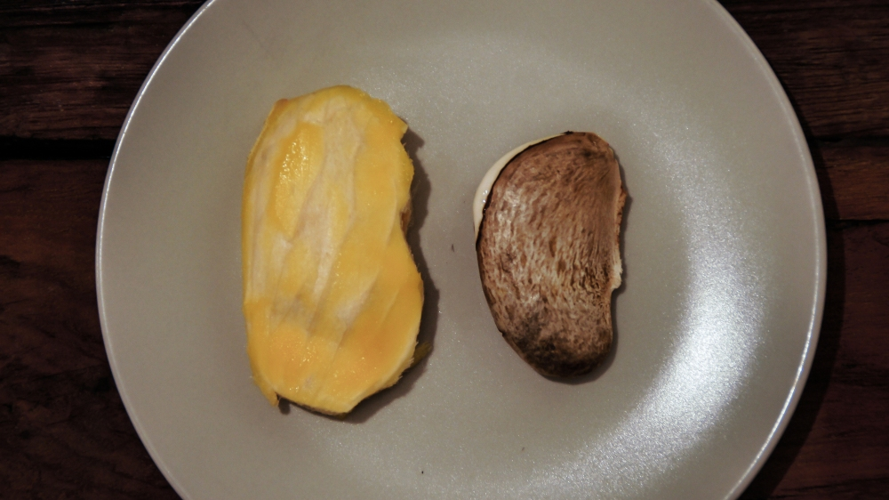 Mango seed out of shell